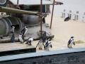Pinguine auf dem Schiff
