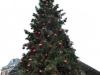 Weihnachtsbaum bei Covent Garden