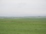 Nordeuropa 23.05.14 – 02.06.14 Tag 5/10 – Orkney Inseln