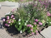 Blumen zur zierde
