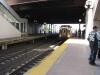 Einfahrender Zug USA New York