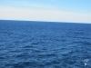 Nordatlantischer Ozean 1