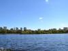Blick vom Charles River auf Boston