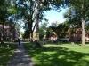Grüne Parkanlagen in Harvard