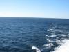 Ein Seetag auf der AIDAbella