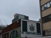 Toronto Hemp Company