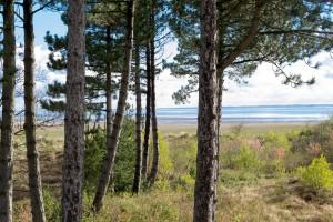 Blick auf die Nordsee aus dem Ferienhaus