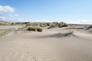 Dünen und Sand so weit das Auge reicht