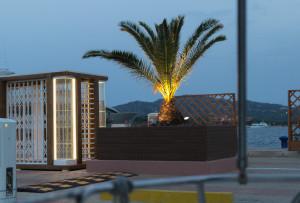 Angeleuchtet Palme bei Nacht