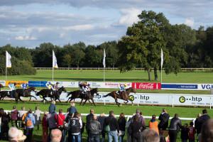Pferde kurz vor dem Ziel der Rennbahn