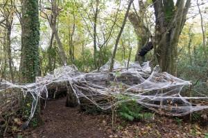 The Lost Gardens of Heligan - Spinnenweben? Nein Fäden!