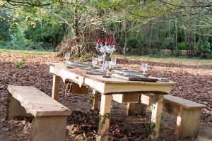 The Lost Gardens of Heligan - Halloween Tisch
