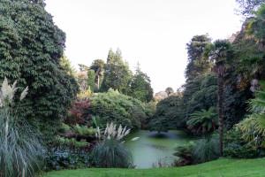 The Lost Gardens of Heligan - der Dschungel