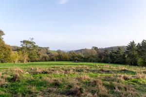 The Lost Gardens of Heligan - Weideland