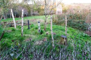 The Lost Gardens of Heligan - Vogelbeobachtungsposten