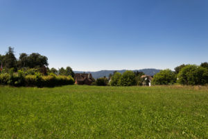 Direkt bei Zürich - Natur pur