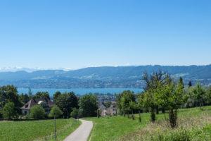 Zürichsee und die Schneeberge