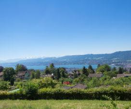 Panoramaweg oberhalb von Zürich
