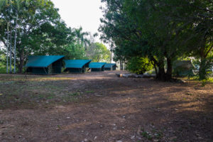 Schatten Platz für die Zelte