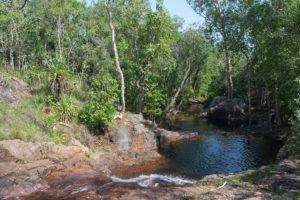 Gleich gehts hier schwimmen im Litchfield Nationalpark - Buley Rockhole