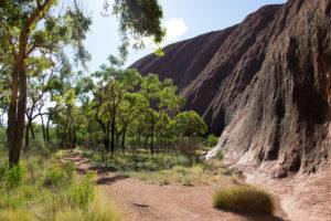 Wandern am wichtigsten Berg Australiens