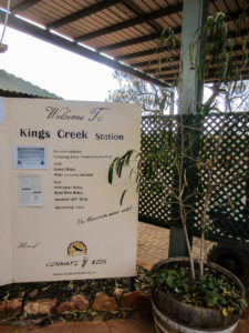 Kings Creek Cattle Station