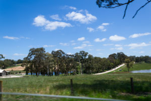 Biggs Flat - Süd Australiens grüne Natur