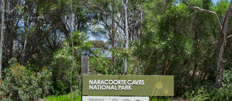 Schild: Naracoorte Caves National Park