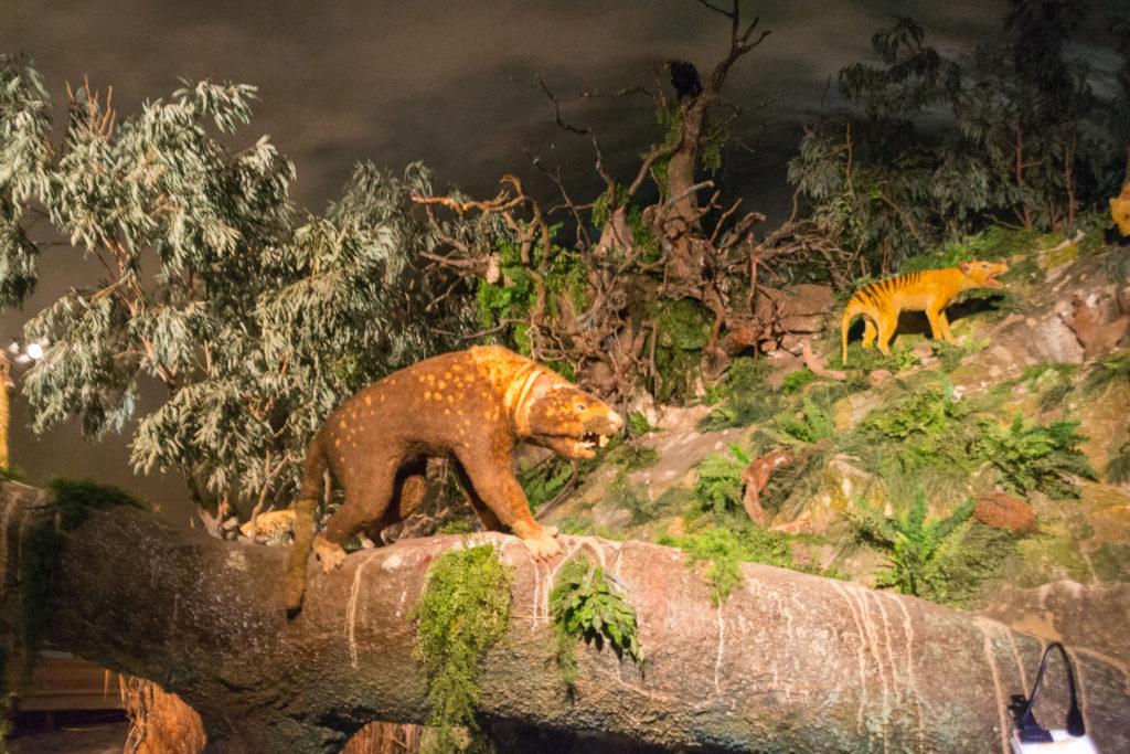 Australische Urzeittiere