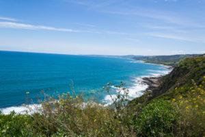 Blick auf Apollo Bay - ganz hinten am Horizont