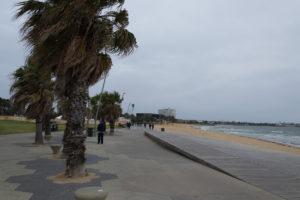 St. Kilda Beach mit Palmen und viel Wind