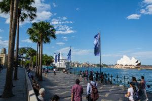 Blick über den Hafen auf das Sydney Opera House