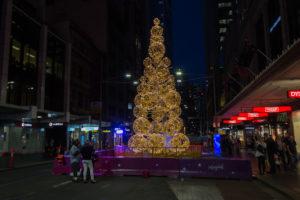 Weihnachtsbaum Nachts in Sydney