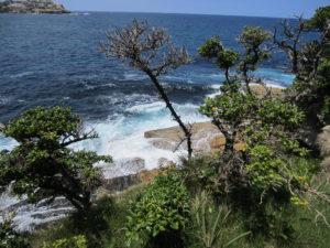 Die Wellen schlagen an Australiens Küste