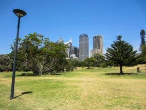 Blick auf Sydneys Hochhäuser