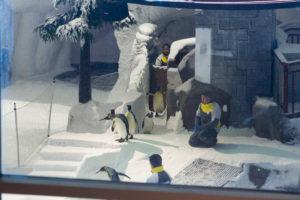 Pinguine in Dubais Skihalle