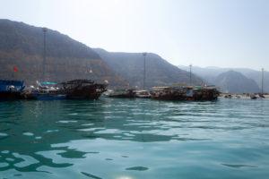 Boote warten auf Touristen