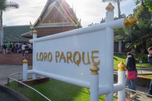 Eingang zum Loro Parque