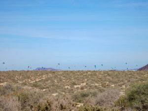 Kitesurfer im Nationalpark Corralejo